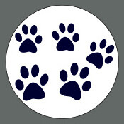 Pet ID Tag - Blue Paws
