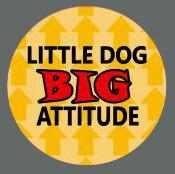 Pet ID Tag - Little Dog Big Attitude