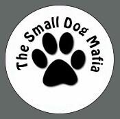 Pet ID Tag - The Small Dog Mafia