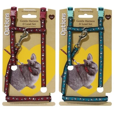 Paw Print Small Animal Harness and Lead Large