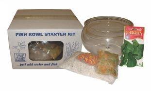 Fish Bowl Starter Kit 7L