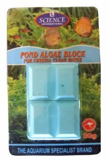 Pond and Fountain Algae Block - Treats 800L