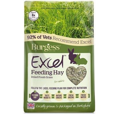Burgess Excel Fresh Forage Timothy Feeding Hay 1KG