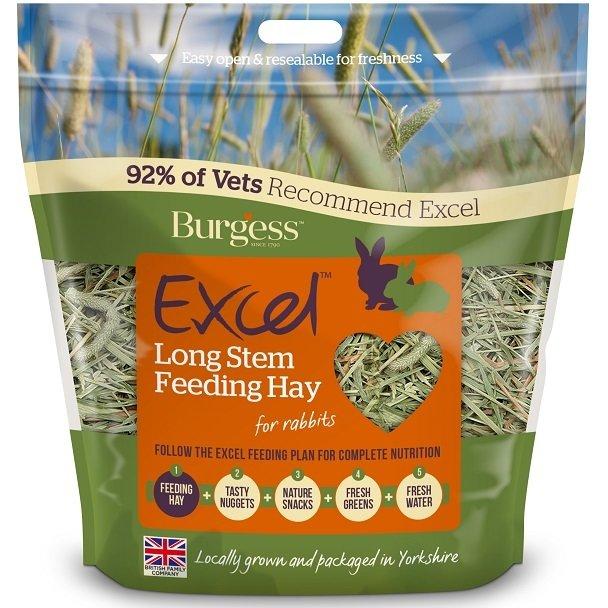 Burgess Excel Long Stem Feeding Hay 1KG