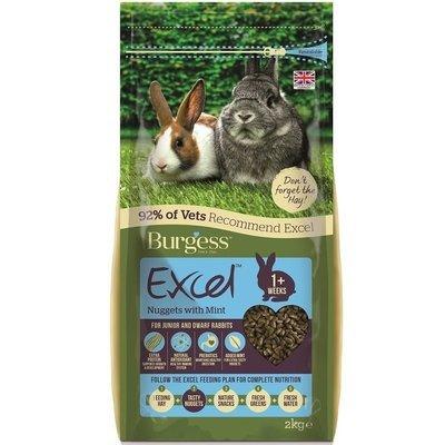 Burgess Excel Junior and Dwarf Rabbit Nuggets 2KG