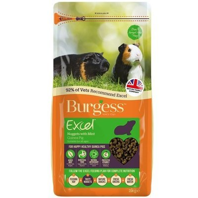 Burgess Excel Guinea Pig Nuggets with Mint 2kg