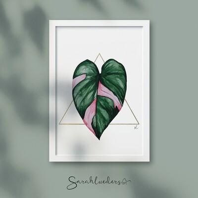 Philodendron Pink Princess, Aquarellbild