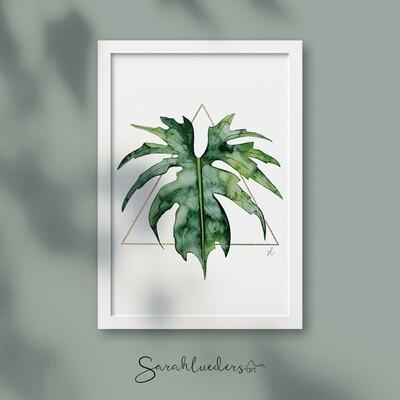 Philodendron Warscewiczii, Aquarellbild