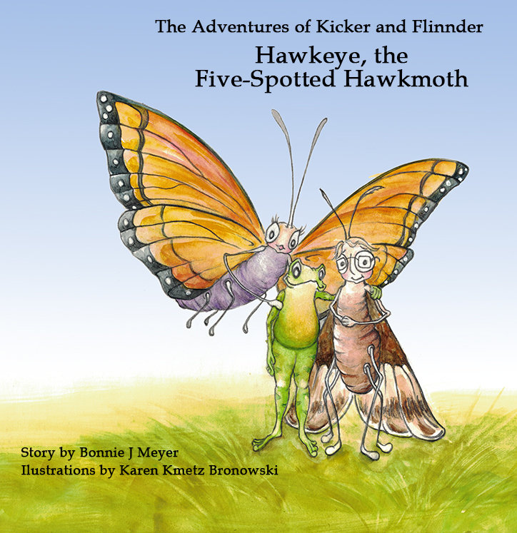 Hawkeye, the Five-Spotted Hawkmoth