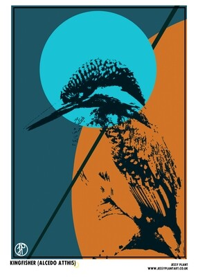 Bird Collection Cards and Prints