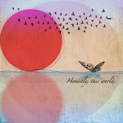 The Moth & The Mirror - Honestly, This World (CD)