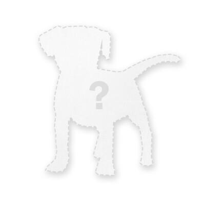 客製 滿版 印花 形體 止滑 隔熱墊 杯墊 地墊 地毯 Shape Insulation Pad / Carpet / Mat