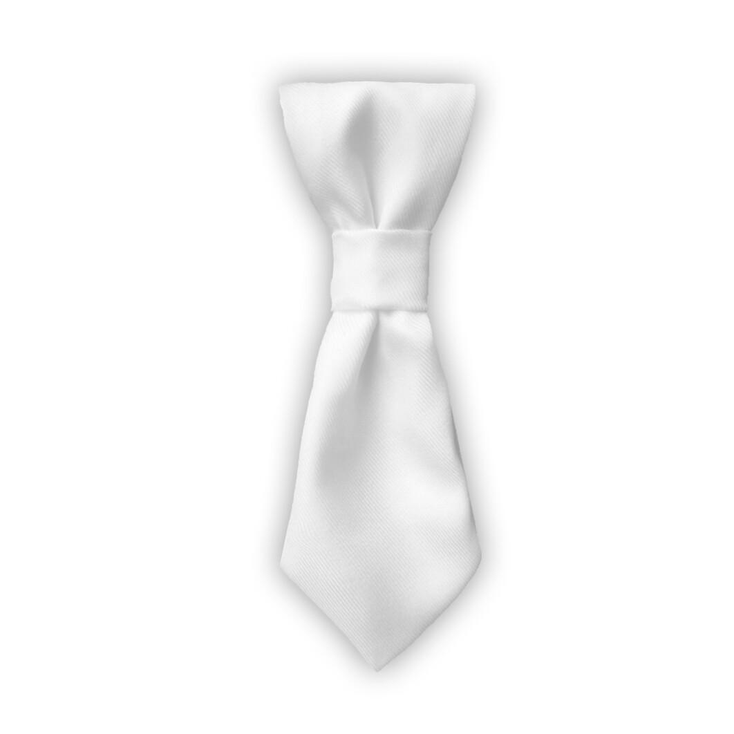 客製 滿版 印花 寵物 可拆 項圈 領帶 領結  Pet Tie