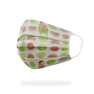 """現貨 滿版 印花 啾是 這個 西瓜 醫療 口罩 (10入) The """"Chu"""" watermelon mask"""