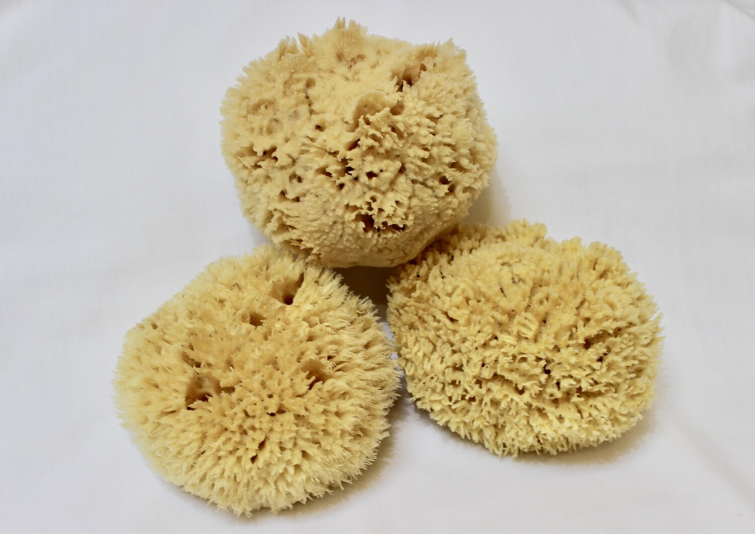 Wool Forms