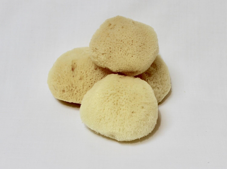 Atlantic Silk Makeup Sponge