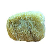 Facial Grass Sponge