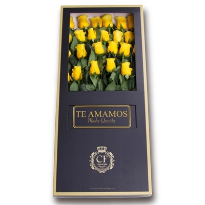 Canaria – Luxury Yellow Roses