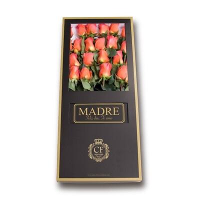 California - Luxury Orange Roses