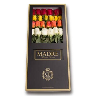 Luxury Tropical Colors - Mixed Colors Roses