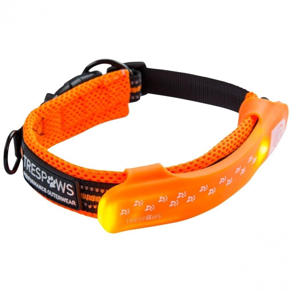Trespass DISCO DOG Hundehalsband Clip