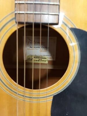 Guitare takamine acoustique
