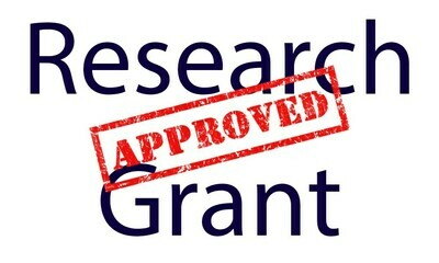 We will research federal, state and foundation grants for you
