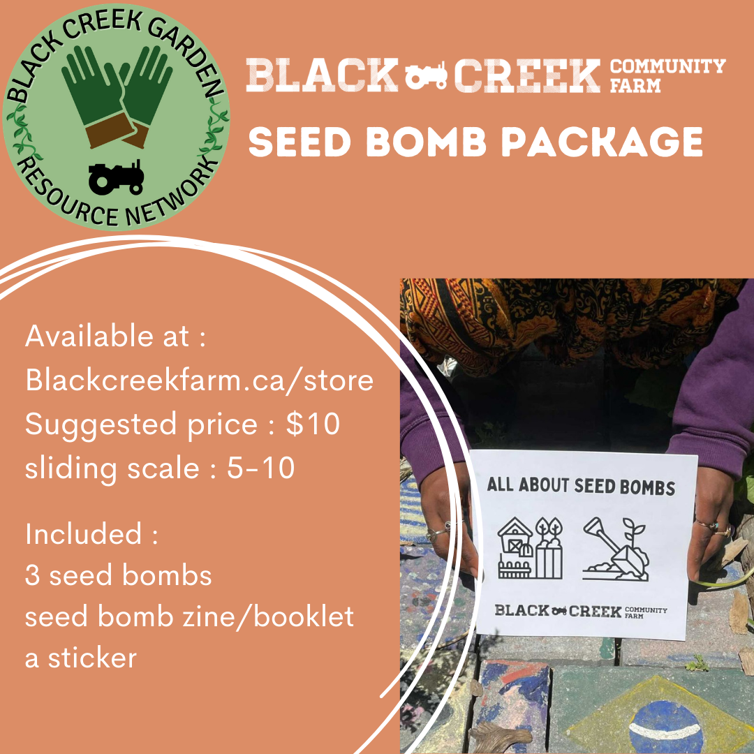 Seed Bomb Package