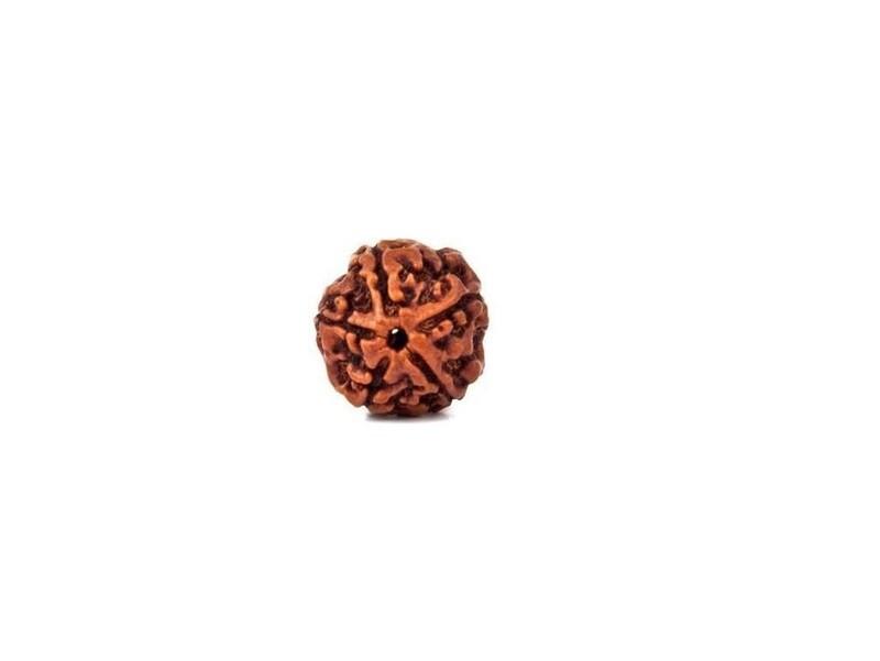 Original 5 Mukhi Nepali Rudraksha Bead without Lab Certificate (17-20 mm)