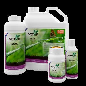 Aptus Enzym+ 0,25L