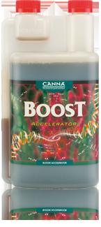 Canna Boost 0,25l
