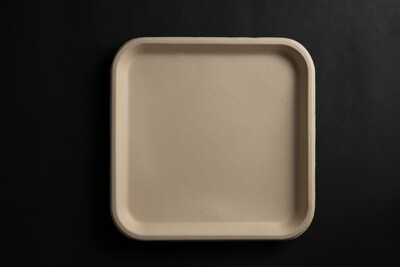 11 Inch Square Compostable Plates | 500 Pieces