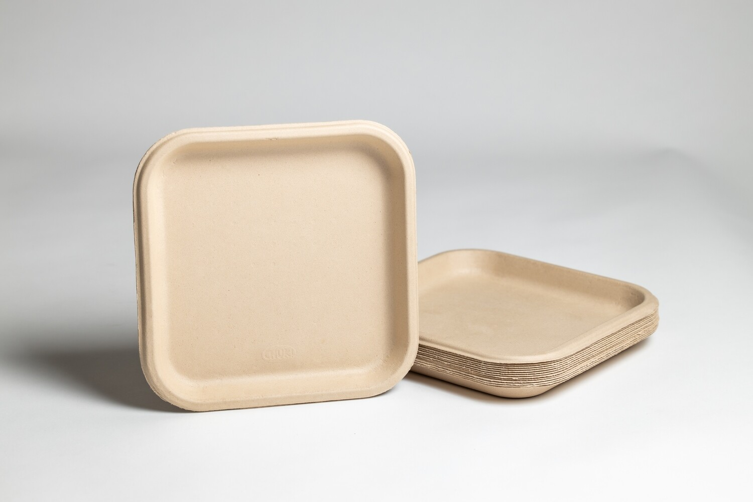 9 Inch Square Compostable Plates | 500 Pieces