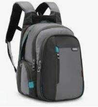 Spacious Laptop Back Pack