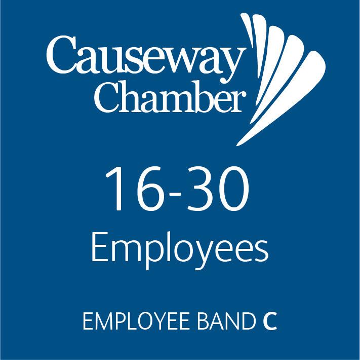 Employee Band C (16 - 30 employees)