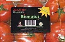 Fresh Steak Tomatoe (6 pack)