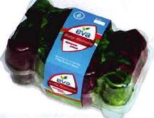 Eva Fresh Mini-Romaine Lettuce (8 in box)