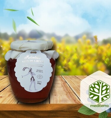 Melodiko Griekse Honing Miel de Grece
