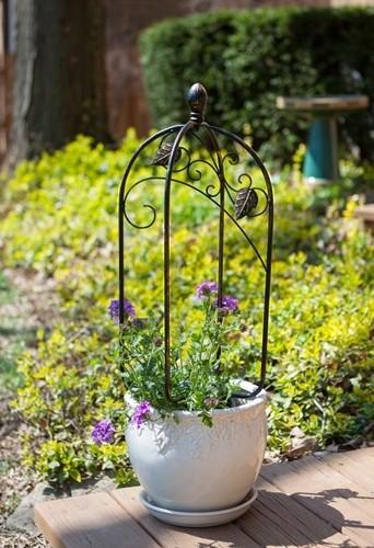 Scroll & Ivy Mini Pot Trellis - Bronze