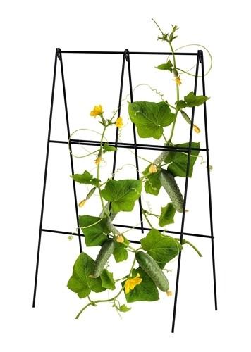 Folding A-Frame Cucumber Trellis - Black