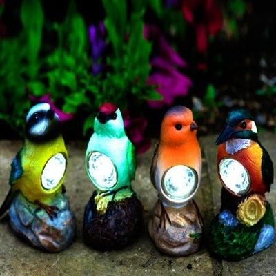 Bird Spots