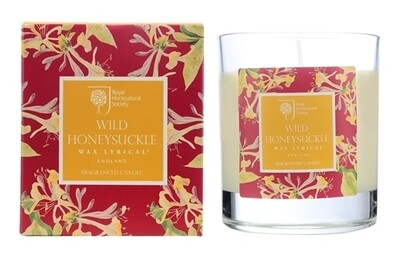 Wild Honeysuckle Candle