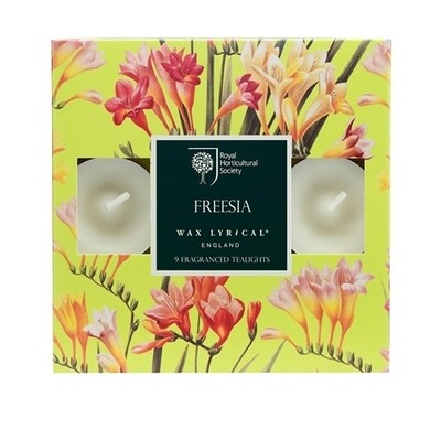 Freesia Tealights