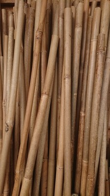 Bamboo canes 6ft