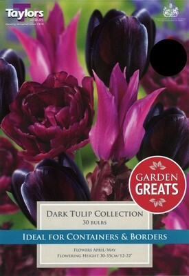 Dark Tulip Collection x30