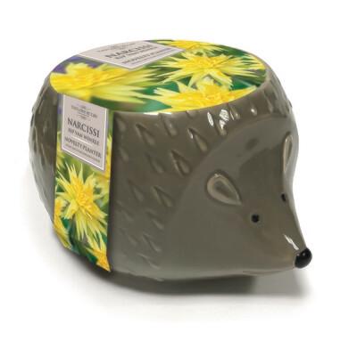 Novelty Hedgehog Planter