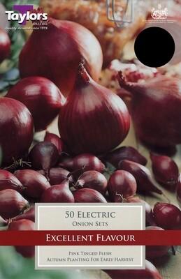 Onion Set Electric x50