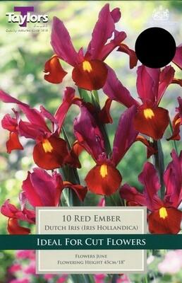 Iris Red Ember x10
