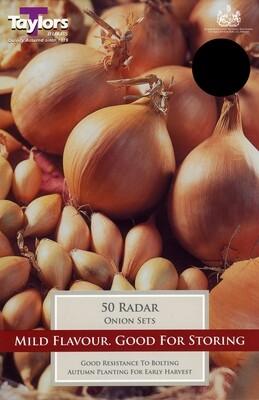 Onion Set Radar x50