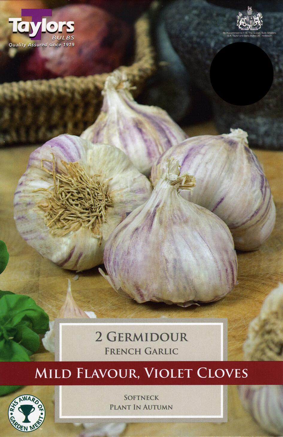 Garlic French Germidour x3